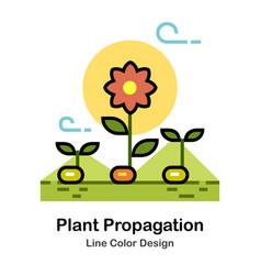 Plant propagation line color icon vector