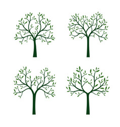 Set trees with leaves and roots vector