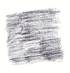 stock texture burlap vector image