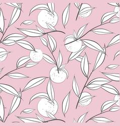 summer fruit peach banner sketch vector image