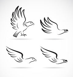image of an eagles design vector image vector image