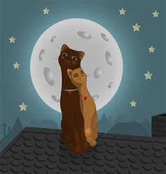 Pair of cats on the roof vector image vector image