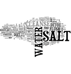 Why finish your detox with a salt water cleanse vector