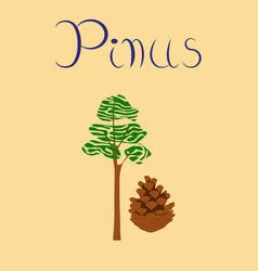 Flat stylish background plant pinus vector