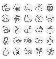 fruit icons set on circles background for graphic vector image