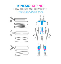 Kinesiology taping how to cut and how using the vector