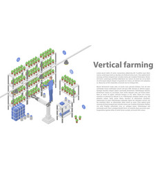Vertical farming concept banner isometric style vector