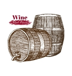 Wine Barrels Hand Draw Sketch vector image