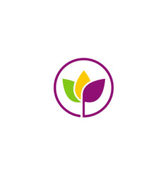 leaf colored beauty plant logo vector image