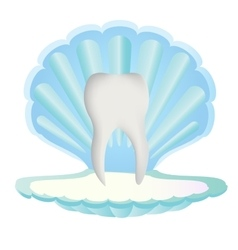 Tooth inside sea shell vector image