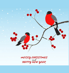 Christmas greeting with birds sitting on branch vector