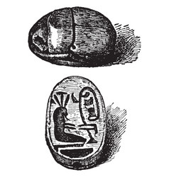 Scarab is a carved piece of stone used vector