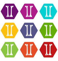 bone icon set color hexahedron vector image vector image