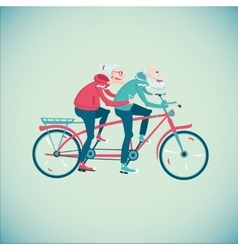 Elderly couple riding a bicycle vector image