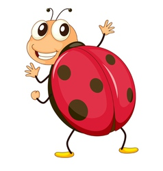 Cartoon ladybird vector