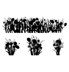flowerbed silhouette wild forest and garden vector image