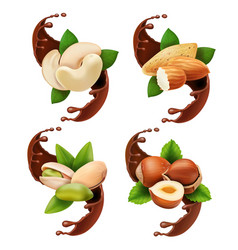 liquid melted pouring chocolate and nuts vector image