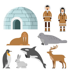 Polar arctic animals and residents of the north vector