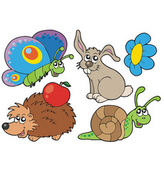 small animals collection 7 vector image
