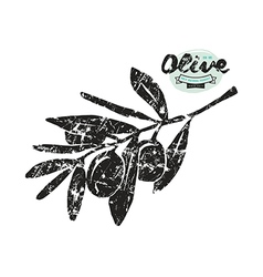 Stock of olive branch silhouette vector image