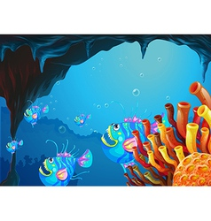A cave under the sea with school of fish vector