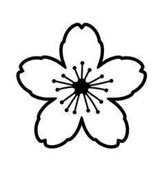 Cherry blossom flower or sakura festival line icon vector
