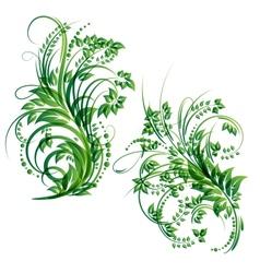 Floral design element vector
