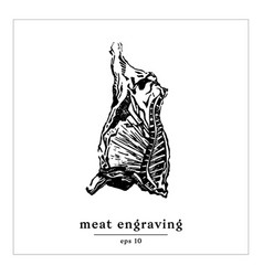 Gastronomic engrave cow vector