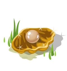 Single beige pearl in a Golden shell nad grass vector