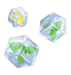 Refreshing ice cube with slice of lemon and mint vector