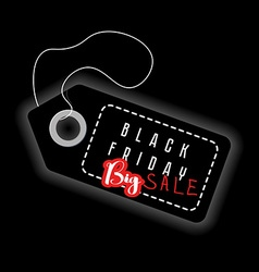 Black Friday big sale Sales discount advertising vector image