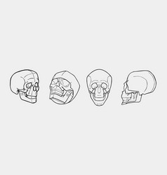 Hand drawn black and white skulls set vector