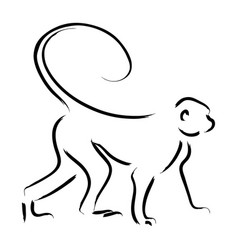 line art of a monkey vector image