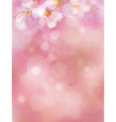 pink spring vector image vector image