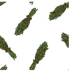 Sage smudge sticks hand-drawn boho seamless vector