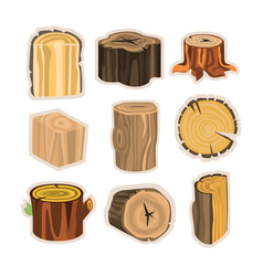 Set of different stump trees wooden materials vector
