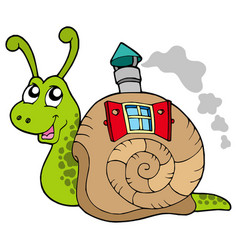 snail with shell house vector image