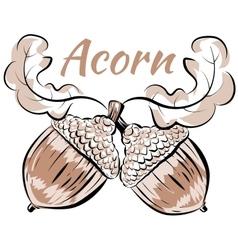 oak branch two acorns vector image vector image