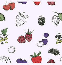 berries seamless pattern vintage hand drawn vector image