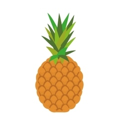 Colored pineapple icon vector