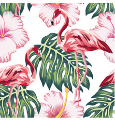 flamingo green leaves pink hibiscus white vector image
