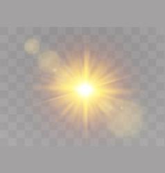 Sunlight light effects vector
