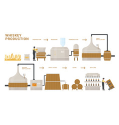 Whiskey production infographic process vector