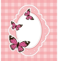 beautiful butterfly frame vector image
