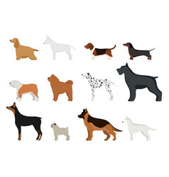 funny cartoon dog character bread in cartoon style vector image vector image