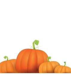 autumn pumpkins border design template vector image