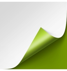 Curled corner of White paper on Green Background vector
