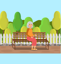 elderly lady sitting on bench flat vector image