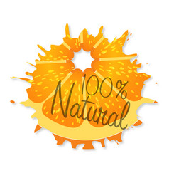 logo natural orange with shadow on a white vector image