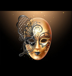 volto mask decorated with butterfly lace vector image